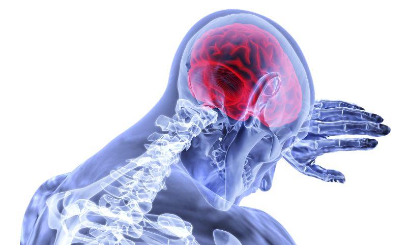 「脳内麻薬」の紹介